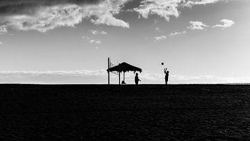 strandleben von andreas dauer