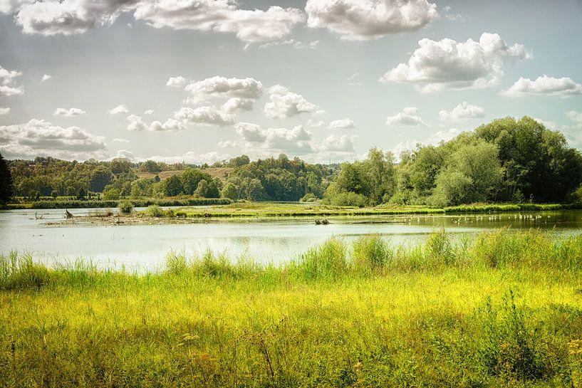 Flusslandschaft an der Reuss in der Schweiz von Nicc Koch