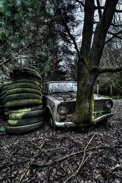 Lost in the Woods 1 van Kirsten Scholten