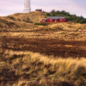 Duinlandschap bij de vuurtoren van Lyngvig Fyr van Dirk Wiemer