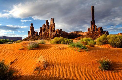 Totempaal in Monument Valley van