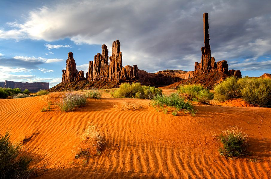 Totempaal in Monument Valley van Michael Bollen