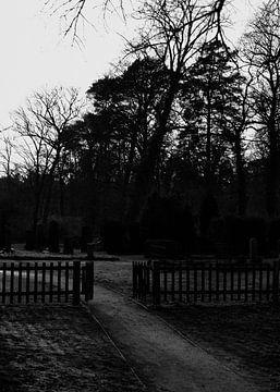 Begraafplaats van Iritxu Photography