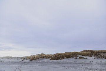 Duinen in Texel van Dixy Kracht