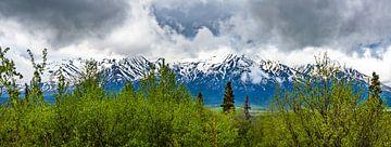 Besneeuwde bergruggen in Yukon, Canada van Rietje Bulthuis