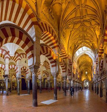 De zuilenhal van de moskee - kathedraal, Mezquita-catedral de Cordoba van Rene van der Meer
