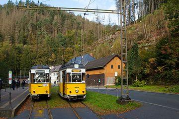 "Kirnitzschtalbahn - eindpunt ""Lichtenhainer Wasserfall"" van t.ART"
