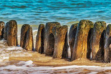 Groynes at the beach of the Baltic van Gunter Kirsch