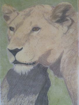 leeuwin van Edith Boogaard van den
