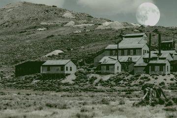 Bodie - Ghost town van Christine Nöhmeier