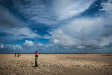 Wandeling langs het strand van Guus Quaedvlieg