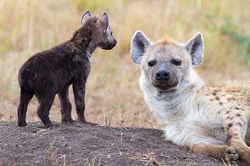 Hyena met jong dier van Angelika Stern