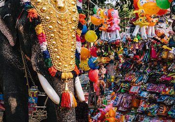 Bunter Elefant neben Spielzeug während des Festivals in Kerala, Südindien von Robin Patijn