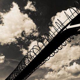 Slinky Springs To Fame (7-141022) B+W von Franz Walter