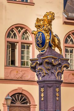 Marktbrunnen vor altem Rathaus, Wiesbaden van Christian Müringer