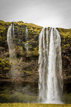 Seljalandsfoss, IJsland van Fenna Duin-Huizing