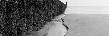 Nordsee von Jeroen Jongeneelen