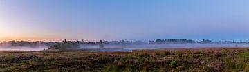Panorama van de Kampina met mist van Stephan Krabbendam