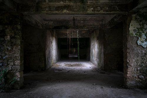 Spookachtige Gang. van Roman Robroek