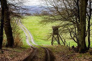 De weg door het bos van JWB Fotografie