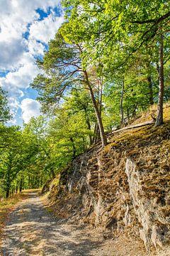 Landschap met rots en bomen langs bospad in Sauerland Duitsland van Ben Schonewille