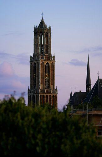 De Dom van Michiel Heuveling