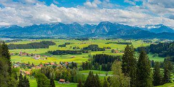 Ostallgäu und Ammergauer Alpen von Walter G. Allgöwer