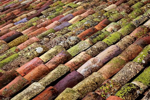 Gekleurde serie dakpannen.