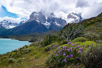 Torres del Paine, Chile von Floris Hieselaar