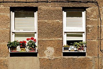 Twee vensters von Artstudio1622