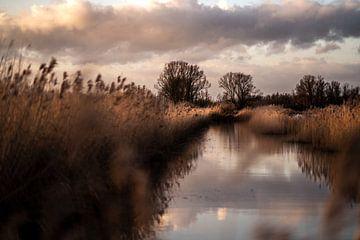 Landschap bij ondergaande zon van Bert-Jan de Wagenaar