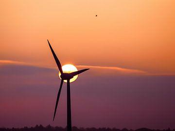 Windmühlen 3 von