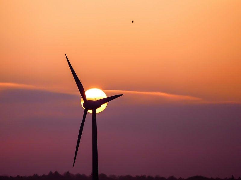 Windmills 3