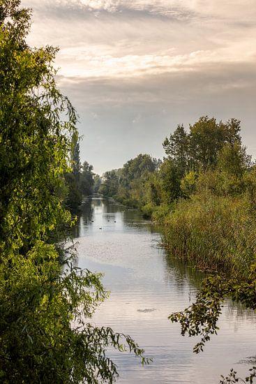 Herfst De Elzen Dordrecht