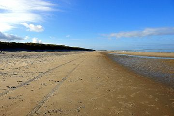 strand Renesse Zeeland von Bram Claassen