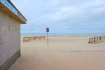 Ster der Zee van Johan Vanbockryck