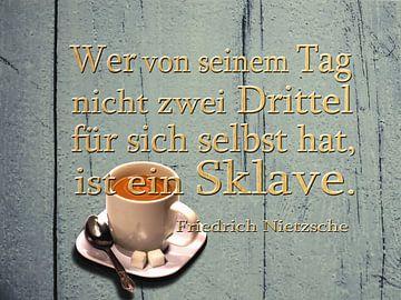 Nietzsche - Die van zijn dag ... van Christine Nöhmeier