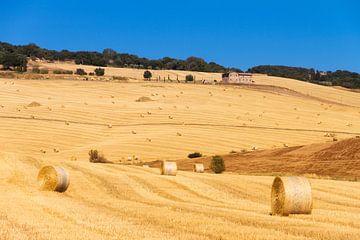 Landschap van Toscane von Dennis van de Water