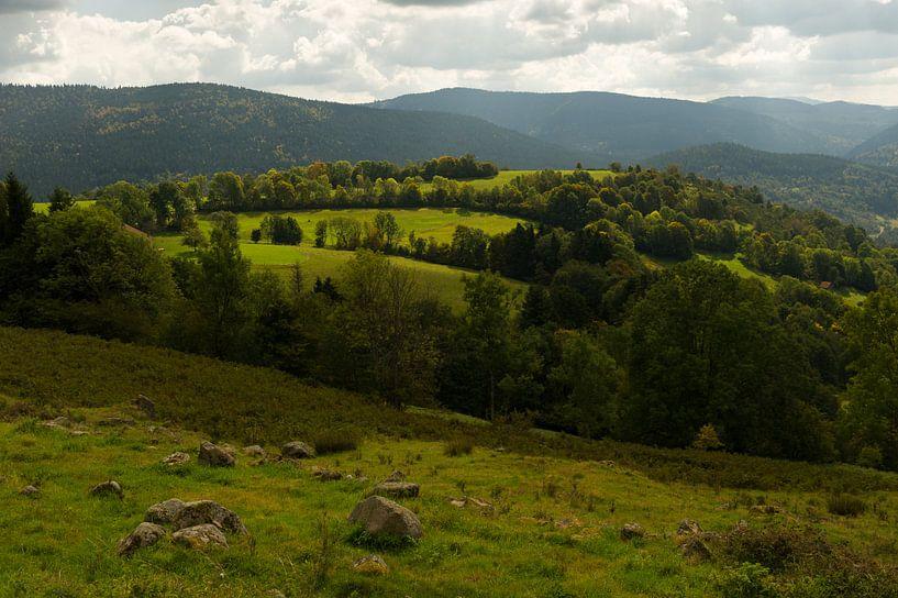 Vosges sur Wim Slootweg