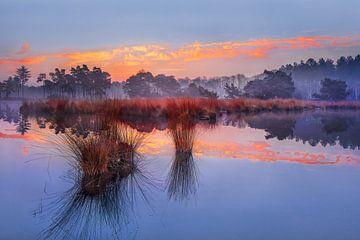 Zonsopgang met blauwe hemel en dramatische wolken weerspiegeld in een lake_1 van Tony Vingerhoets