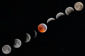 Mondfinsternis von Richard van t Hof
