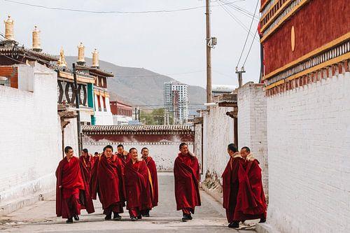 Tibetaanse monniken