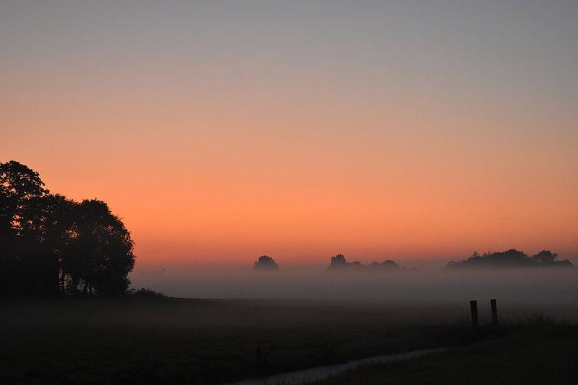 Morgennebel van Johanna Varner