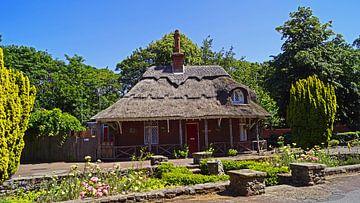 Gebäude mit roten Klinker Steinen und Reetdach von Babetts Bildergalerie