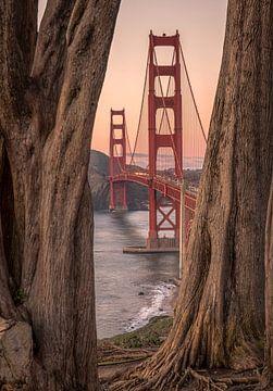Golden Gate bridge(!) sur