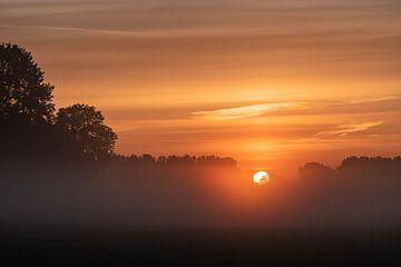 oranje sfeer in de ochtend van Tania Perneel