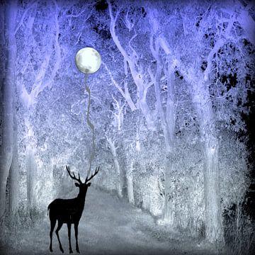 Mondnacht van Vera Laake
