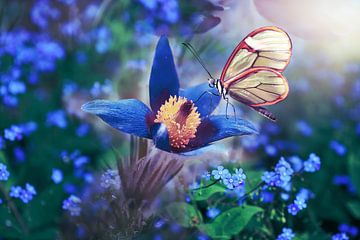Vlinder in wit op bloem in blauw van Atelier Liesjes
