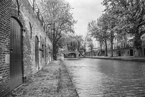 Werfkelder langs gracht in Utrecht