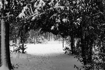 Winterlandschaft mit Weitblick. von Lieke van Grinsven van Aarle